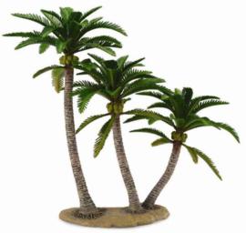 palmboom 89663