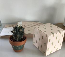 Cactus dozen