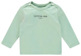 Hester Grey mint