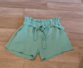 Tetra short mint