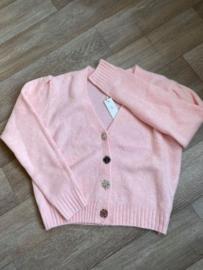 Gilet pink