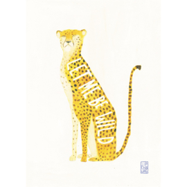 Postkaart A6 | Cheetah | 1 stuk