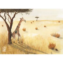 Kaart A5 | Giraffe | 3 x 2 stuks