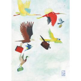 Postkaart A6 | Migration | 1 stuk
