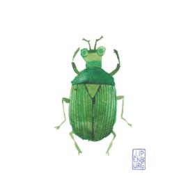 Kaart A7 | Bugs and beetles 1 | 5 stuks