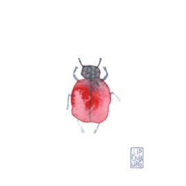Kaart A7 | Bugs and beetles 9 | 5 stuks