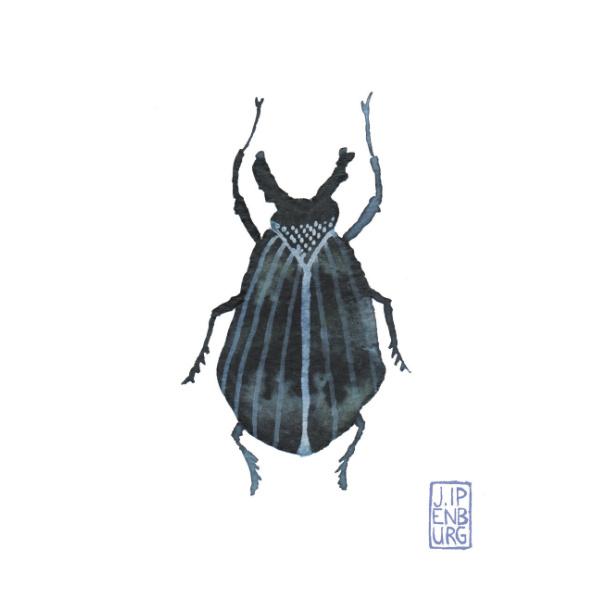 Kaart A7 | Bugs and beetles 8 | 5 stuks