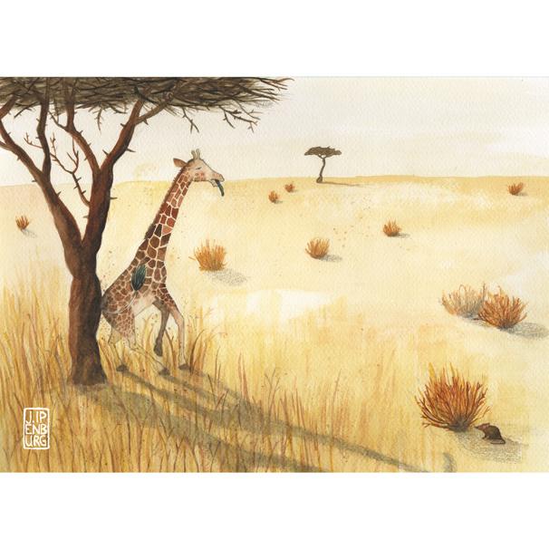 Kaart A5 | Giraffe Savanne | 2 stuks