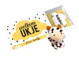 Wensdoosje / Greetingbox Welkom Ukje