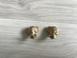 Haakje olifant