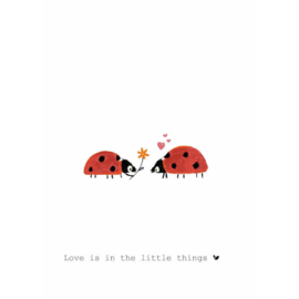 LOVE IS IN THE LITTLE THINGS - Nadine Illustraties