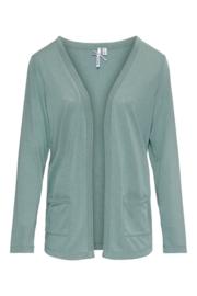 Dreamstar vest (10170) Z21 122 Vern