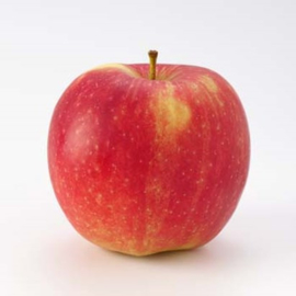Pomme Prins Jonagold (1 kg)