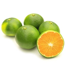 Mandarine Satsuma (par 500g)
