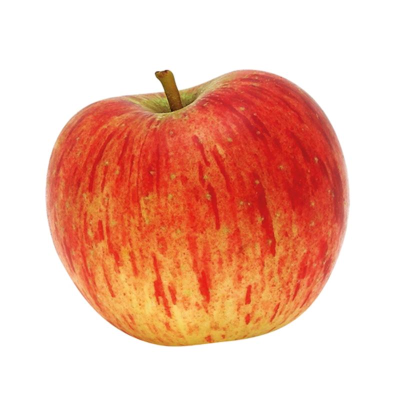 Appel Pirouette (per kg)