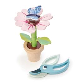 Tender leaf // Blossom flowerpot  + hidden message