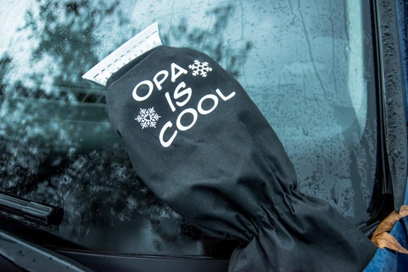 IJskrabber 'Opa is cool'