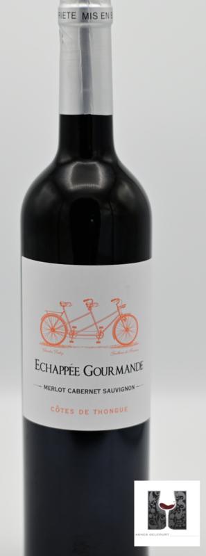 Domaine Hauts de Margon - Echappée gourmande - Rood