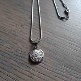 Halsketting Stainless steel Zilverkleur met Hanger