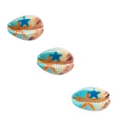 Kauri schelp met zeester
