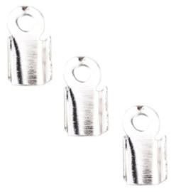 Veterklem - Licht Zilverkleur - 6x3mm - 40 stuks
