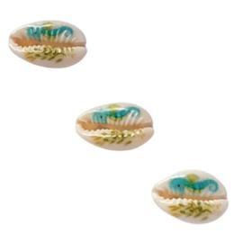 Kauri schelp met zeepaardje