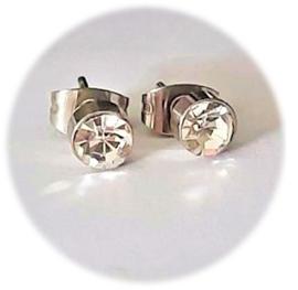 Stainless steel oorsteker met zirkiona - 5mm - transparant